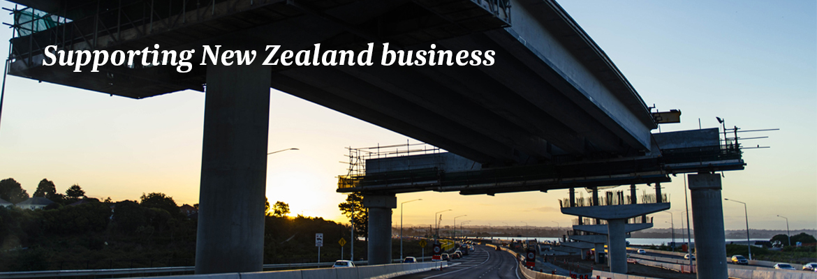 Supporting New Zealand business